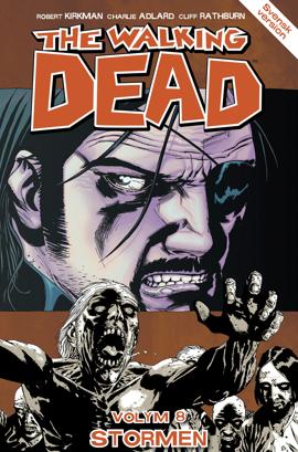 Bild på The Walking Dead 8: Stormen